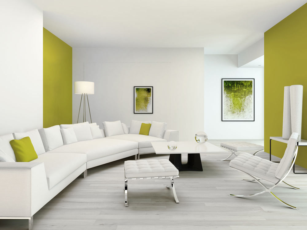 Green Wall With White Sofa