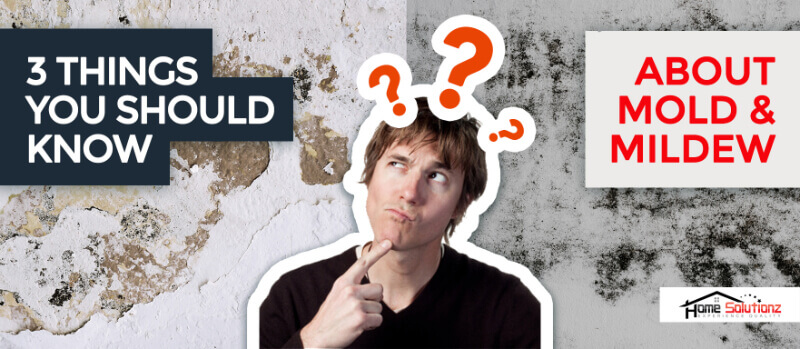 What is the difference between Mold & Mildew?
